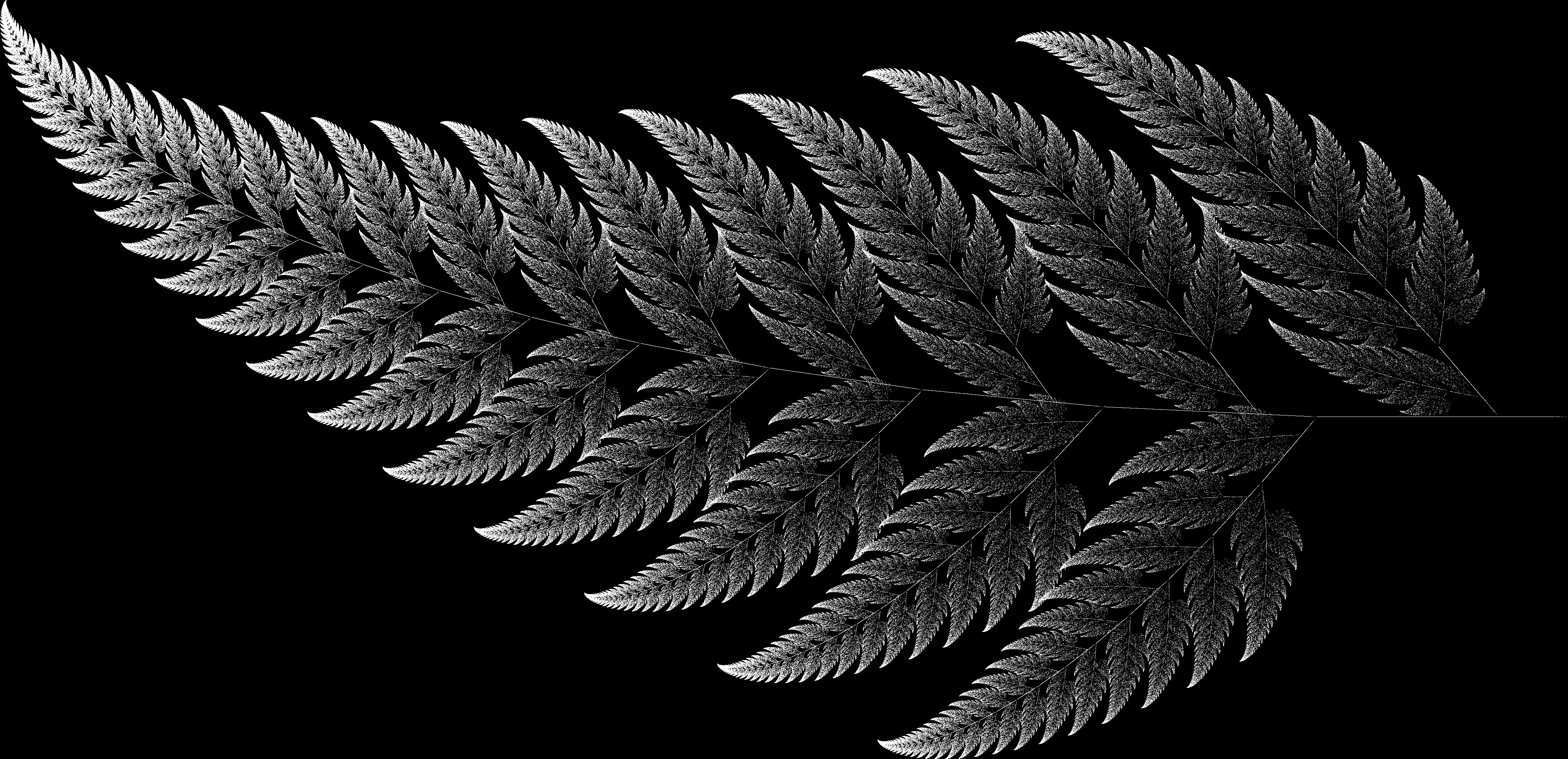 Barsley Fern fractal